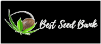 Best Seed Bank - Ganja Breeder Reviews! 2017-2019 Comments - Skunk Seeds